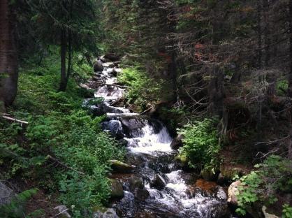 James Peak Wilderness Falls